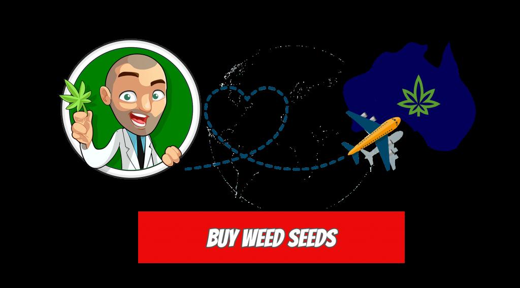 Buy weed seeds in Australia